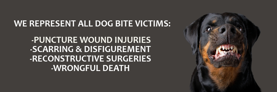 Animal & Dog Bites Claims Victims